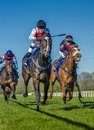 Horse racing galop in langenhagen near hanover Royalty Free Stock Photography