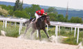 Horse racing at the hippodrome in pyatigorsk action shot of jockeys race northern caucasus russia Stock Photo