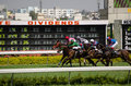 Horse racing in Hyderabad Stock Images