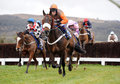 Horse racing long run leads the gold cup race at cheltenham before going on to finishing rd in the race Royalty Free Stock Image