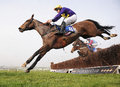 Horse racing lord windermere wins at cheltenham gold cup races seen here jumping the rd last Stock Photo