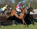 Horse racing over fences a point to point amateur event the jumps in the uk Stock Photos