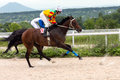 Horse racing in pyatigorsk race for the prize of the caucasus Stock Images