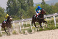 Horse racing in pyatigorsk the race for the prize of the victory day northern caucasus russia Royalty Free Stock Photo