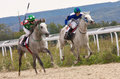 Horse racing in pyatigorsk race for the prize of the zakritia northern caucasus russia Stock Photography