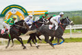 Horse racing pyatigorsk russia may jockeys l r imran mardanov ilgiz saitgaleev adel aituganov and aslan kardanov race for the Royalty Free Stock Photo
