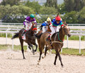 Horse racing race for the prize of pobeda in pyatigorsk caucasus russia Stock Images