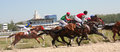 Horse racing race for the prize pyatigorsk northern caucasus russia Royalty Free Stock Image