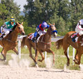 Horse racing the race for the prize of the pyatigorsk northern caucasus russia Stock Image
