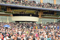 Horse racing the royal box at ascot Stock Image