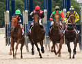 Horse racing start of the race for the prize of the oks pyatigorsk northern caucasus russia Royalty Free Stock Photos