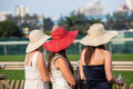 Horse racing three hats girls standing looking at the tracks and horses near the finish line venue event the durban july at Royalty Free Stock Photo