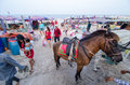 Horse for rent at huahin beach owners and his riding along the in thailand Stock Images