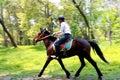 Horse rider Royalty Free Stock Photo