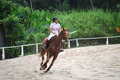 Horse rider a in action at the singapore bukit timah saddle club Royalty Free Stock Photos