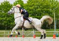 Horse and rider in competition