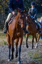Horse riders in countryside Stock Photo