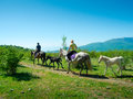 Horse riders traveling in the mountains Royalty Free Stock Photos