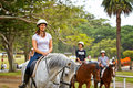 Horse riding in Centennial Park, Sydney Royalty Free Stock Photo