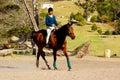 Horse riding girl Royalty Free Stock Photo