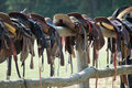 Horse saddles Royalty Free Stock Photo