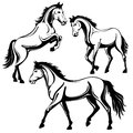 Horse set of three horses black white picture isolated on white background vector illustration Royalty Free Stock Photo