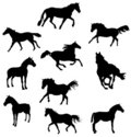 Horse shapes vector Royalty Free Stock Photos