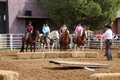 Horse show Royalty Free Stock Images