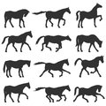 Horse silhouette set. Royalty Free Stock Photo