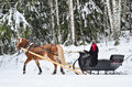 image photo : Horse and sleight