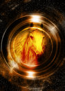 Horse in space, in circle light. Mirror on the planet Earth. Animal concept, Sepia and light Golden color.