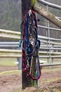 Horse Tack Stock Photos