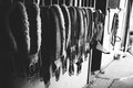 Horse tack hanging outside stall black and white photo of on a Stock Photos
