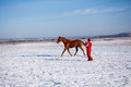 Horse trainer in winter Stock Image