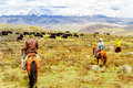 Horse Trekker and Yak herds with nomads in the highlands of Sichuan