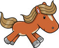 Horse Vector Illustration Stock Photo