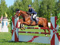 Horseback rider jumps over hurdle girl in equestrian uniform on jumping Stock Photography