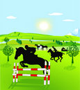 Horseback riding and jumping Royalty Free Stock Photo