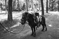 Horseback riding little boy ride a pony the fun and the joy of walking through the woods Royalty Free Stock Photo