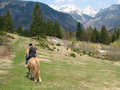 Horseback riding in paradise, triglav national park Stock Photo