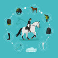 Horseback riding woman and equestrian equipment infographic items, vector illustration.