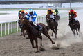 Horserace-10 Royalty Free Stock Photos