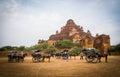 Horses buggy in Bagan Royalty Free Stock Photo