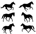 Horses silhouettes collection Royalty Free Stock Photo