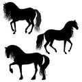 Horses silhouettes isolated Royalty Free Stock Photography