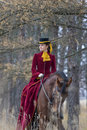 Horsewoman Royalty Free Stock Photo