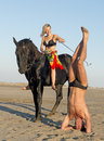 Horsewoman and yogi Royalty Free Stock Photo
