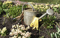 Horticultural things are ready Stock Photo