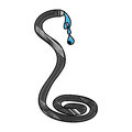 Hose water isolated icon