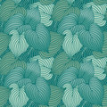 Hosta Leaf Pattern in Blue-Green Royalty Free Stock Photography